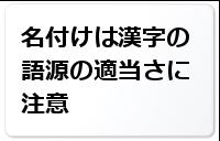 名付けは漢字の語源の適当さに注意