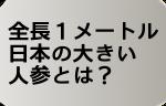 全長1メートル!日本の大きい人参(にんじん)とは?
